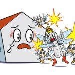 隣の空き家に困っています。近隣の空き家が原因のシロアリ被害とその対策