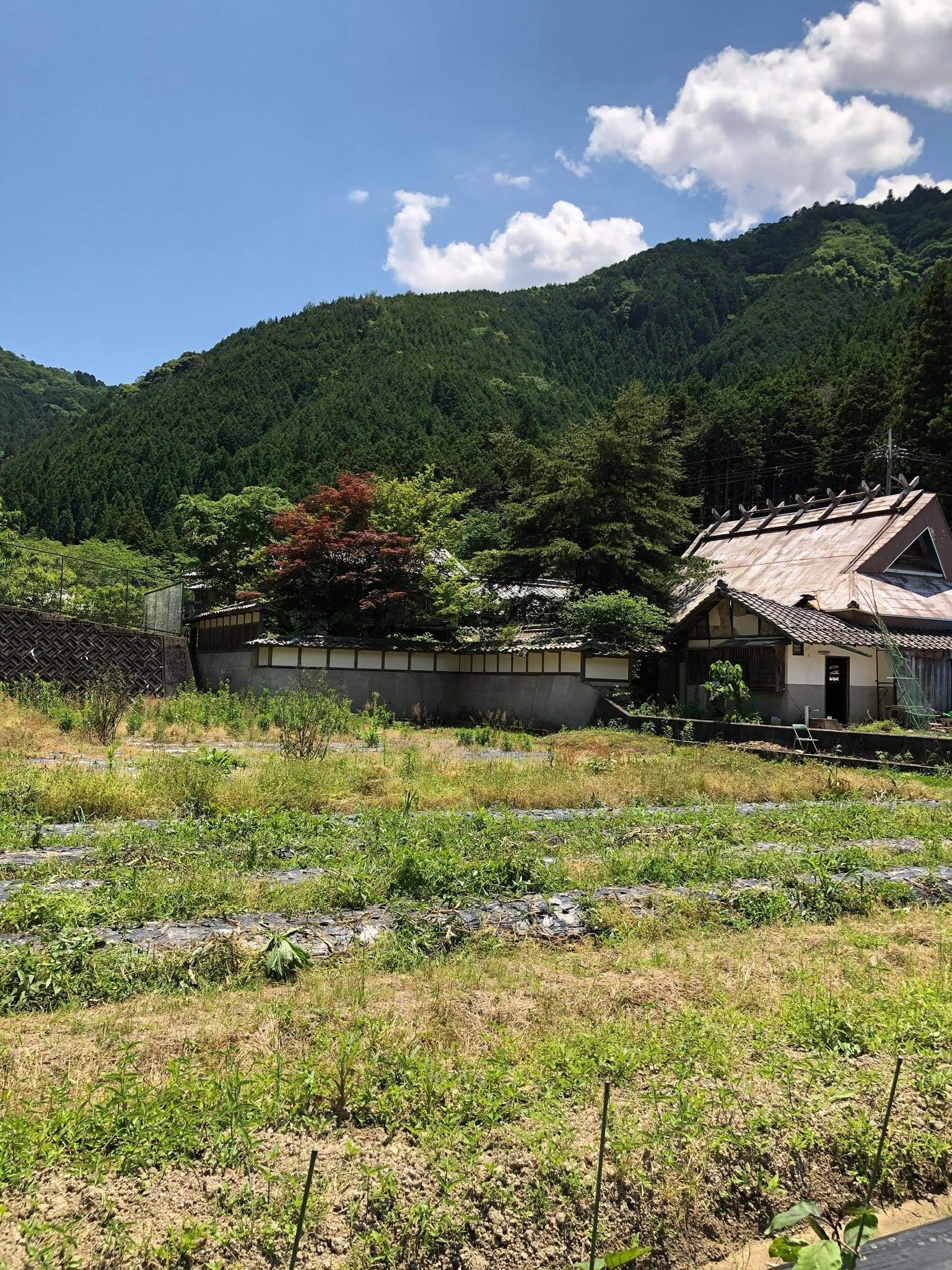 里山・田んぼ(農地)の風景を活かした宿泊施設の写真3