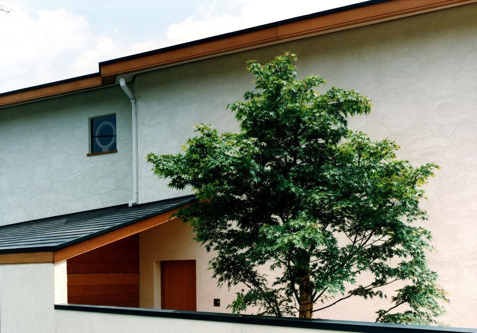 世田谷の事務所併用住宅 ー伽留羅(カルラ)ーの写真2