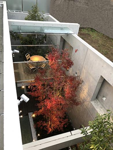 空中テラスの家の写真10
