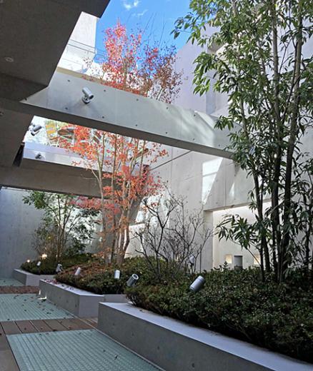 空中テラスの家の写真12