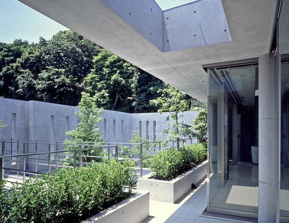 アクアリウムの家の写真6