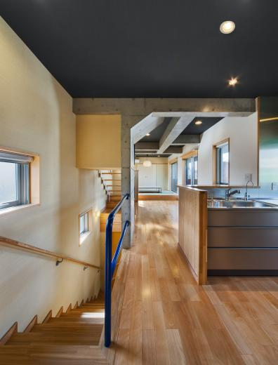 極小住宅 鉄筋コンクリート造 (3F+B1)の縦方向の広がりの写真10