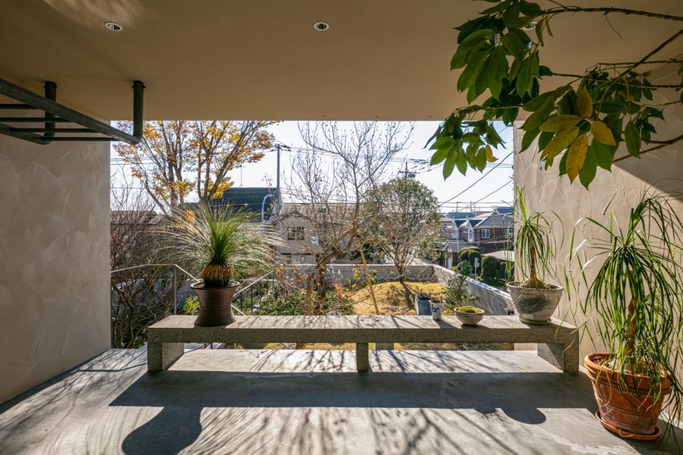 植物と生活する家の写真5