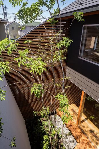 elnath/平面的、立体的な斜めの壁によって構成された空間を考えてみる。の写真12