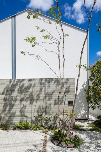 立体テラスのあるコートハウスの写真1